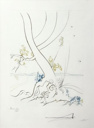 Engraving Dali - L'ARBREDE CONNAISSANCE (THE TREE OF KNOWLEDGE)