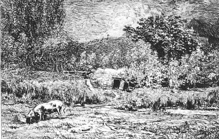 Engraving Daubigny - Le cochon dans un verger