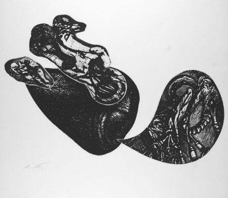 Engraving De Vita - Le cose che volano II