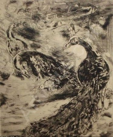 Etching And Aquatint Chagall - Le Geai Pare des Plumes du Paon