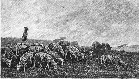 Engraving Daubigny - Le guet du chien