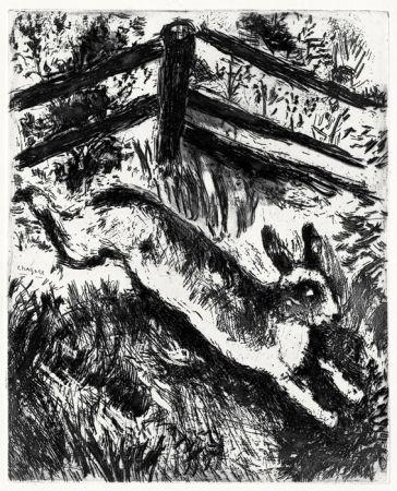 Engraving Chagall - Le Lièvre et les Grenouilles, 1927-1930