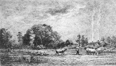 Engraving Daubigny - Le ver de lune