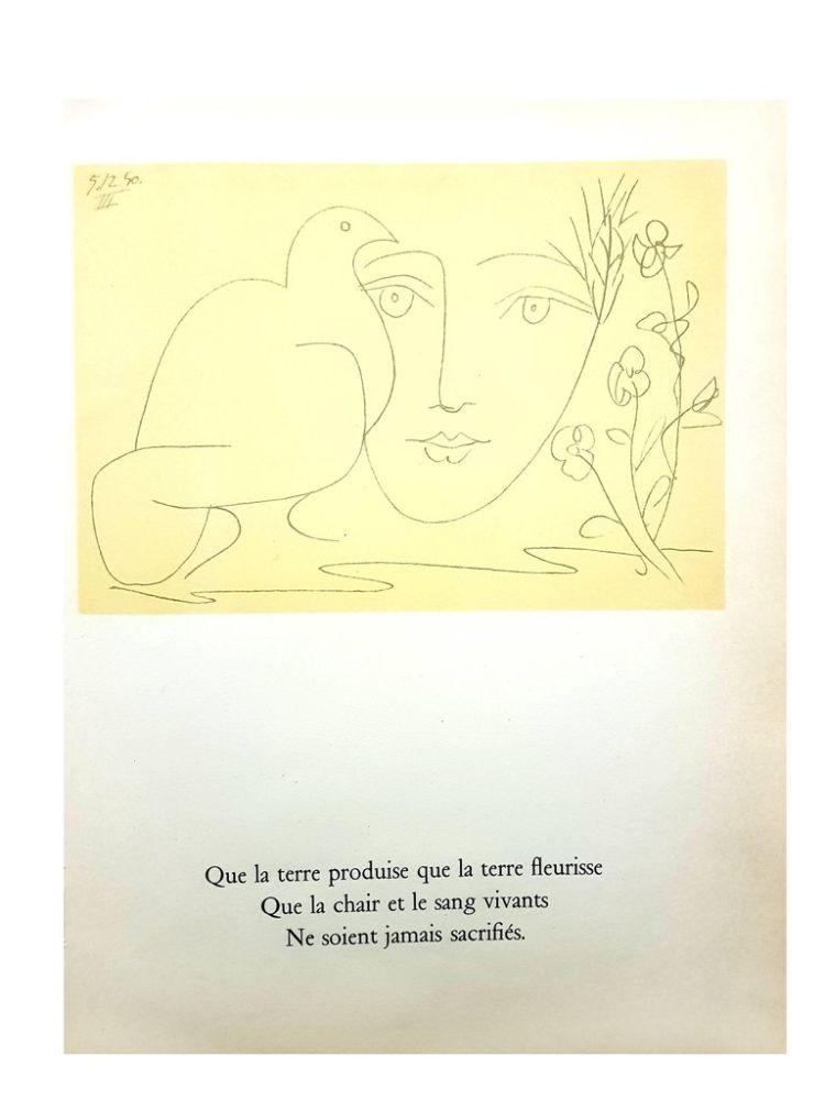 Lithograph Picasso (After) - Le Visage de la Paix