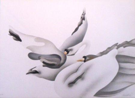 Lithograph Donadini - Les cygnes