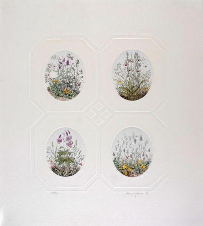 Engraving Hauck - Les Fleurs - Flowers