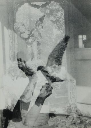 Photography Cramer - Liberation