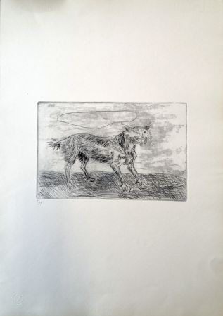Drypoint Ligabue - Lince