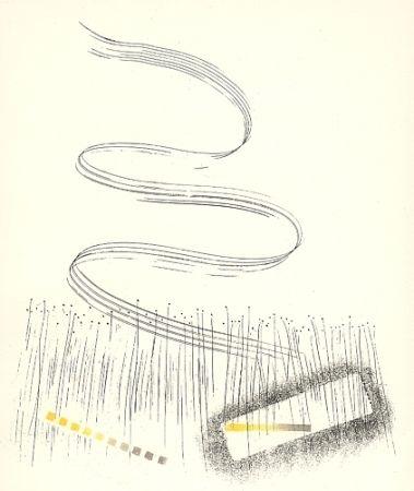 Illustrated Book Melotti - Linee