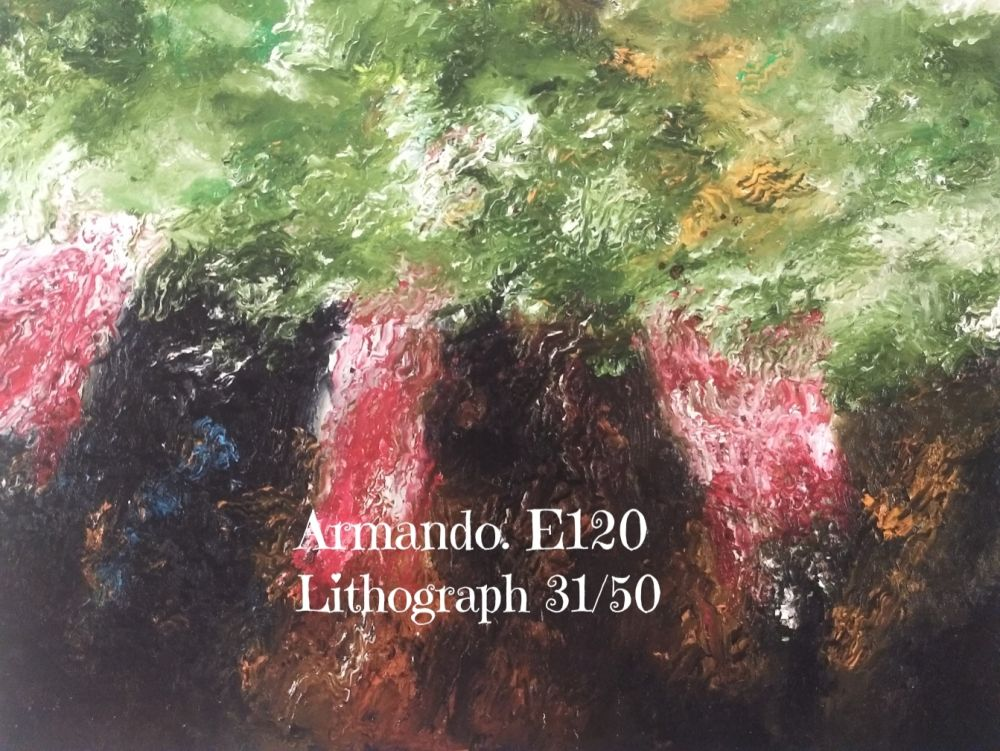 Lithograph Armando - Lithograph