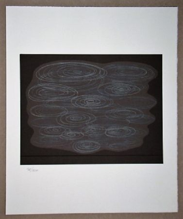 Lithograph Vasarely - Locmaria