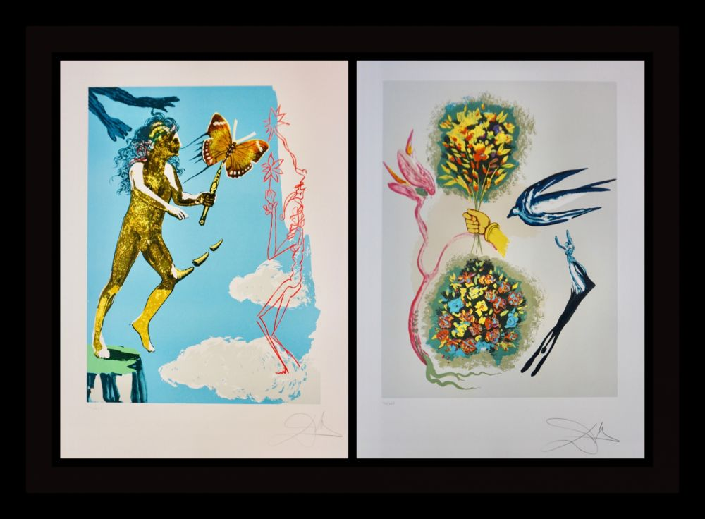 Lithograph Dali - Magic Butterfly & The Dream suite