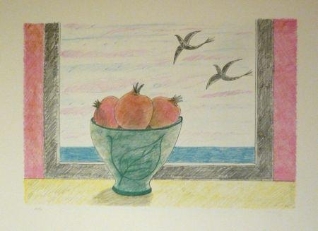 Lithograph Girona - Magranes i ocells