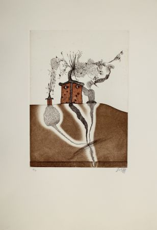 Etching And Aquatint Zush - Mahome
