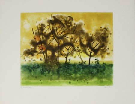 Etching And Aquatint Walker - Meadowland