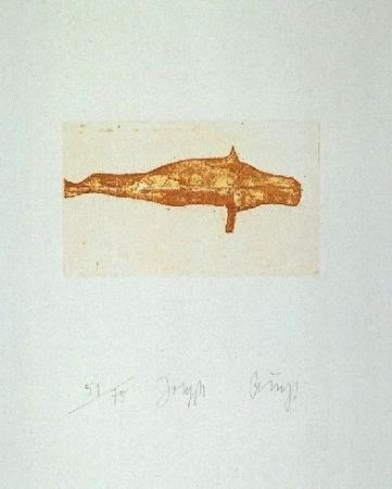 Etching And Aquatint Beuys - Meerengel Robbe I