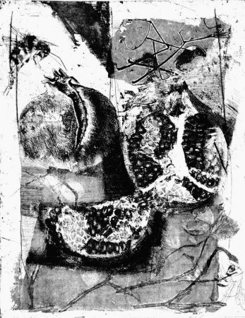 Engraving Calandri - Melograne