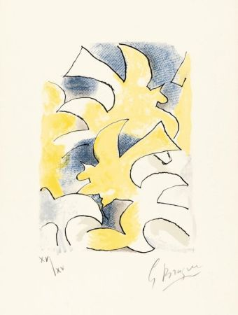 Lithograph Braque - Migration