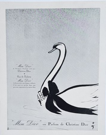 Offset Gruau - Miss Dior