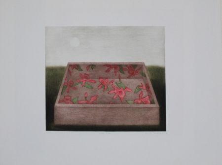 Mezzotint Hwang - Moon & Box