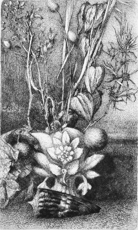 Engraving Bianchi Barriviera - Natura morta