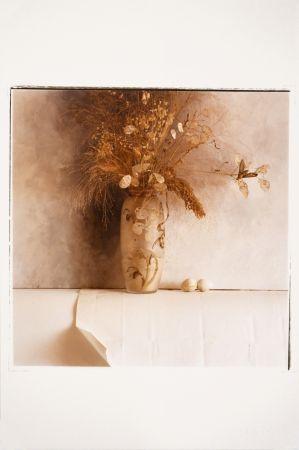 Photography Catany - Natura morta