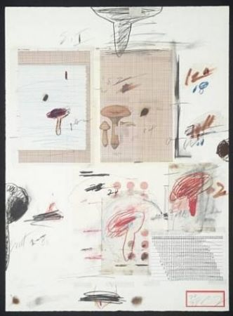 Lithograph Twombly - Natural History Part I: Mushrooms IV