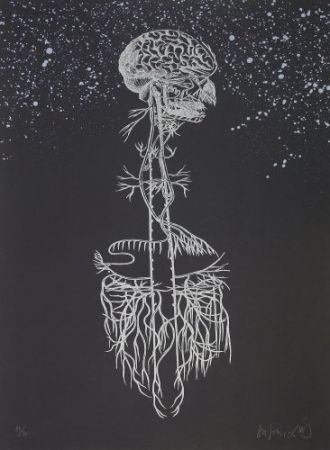 Lithograph Diaz - Navegador