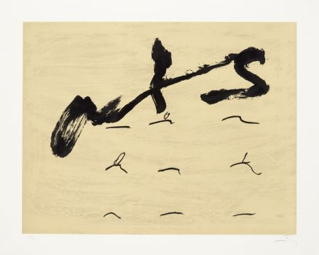 Lithograph Tàpies - Neuf tirets