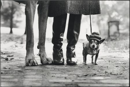 Photography Erwitt - New York City