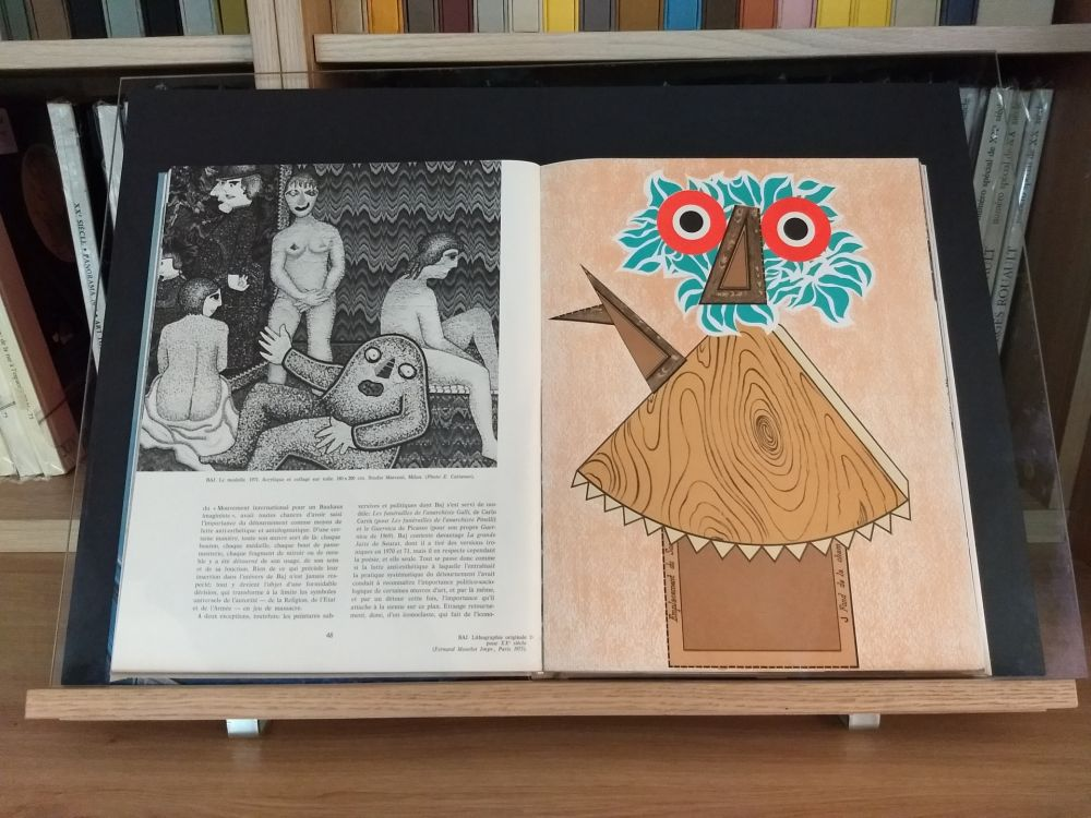 Illustrated Book Baj - No 44