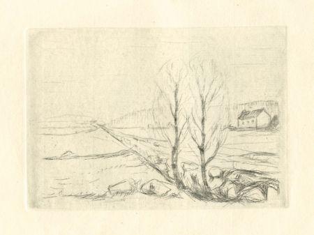 Drypoint Munch - Norwegische Landschaft / Norwegian Landscape