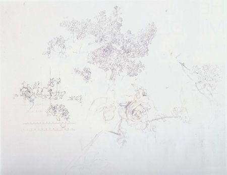 Lithograph Lopez - Olympic Centennial