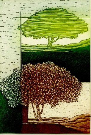 Illustrated Book Rossello - Paesaggio