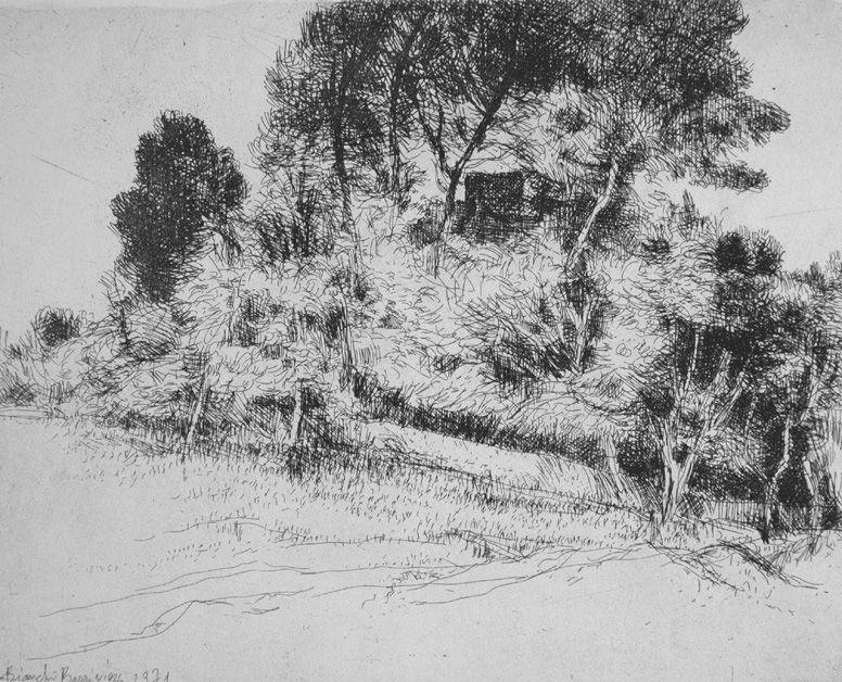 Engraving Bianchi Barriviera - Paesaggio alla via Nomentana