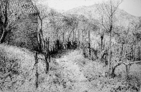 Engraving Barbisan - Paesaggio in collina
