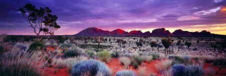 Photography Lik - Painted Skies