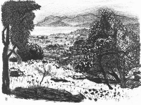 Lithograph Bonnard - Paisage du midi