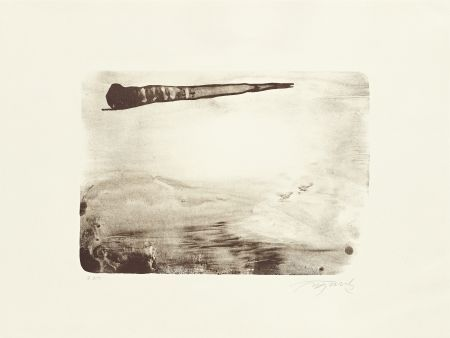 Lithograph Fontela - Palm
