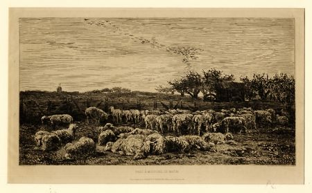 Etching Daubigny - Parc à moutons:  le matin, in