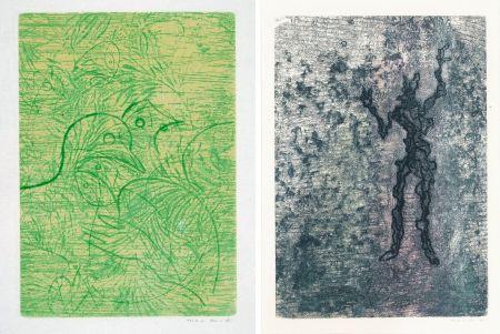 Etching And Aquatint Ernst - PAROLES PEINTES (1959) 2 GRAVURES ORIGINALES DE MAX ERNST (10 gravures originales de Max Ernst, Jacques Hérold, Wifredo Lam, Sébastian Matta et DorotheaTanning. Poèmes d'Alain Bosquet).