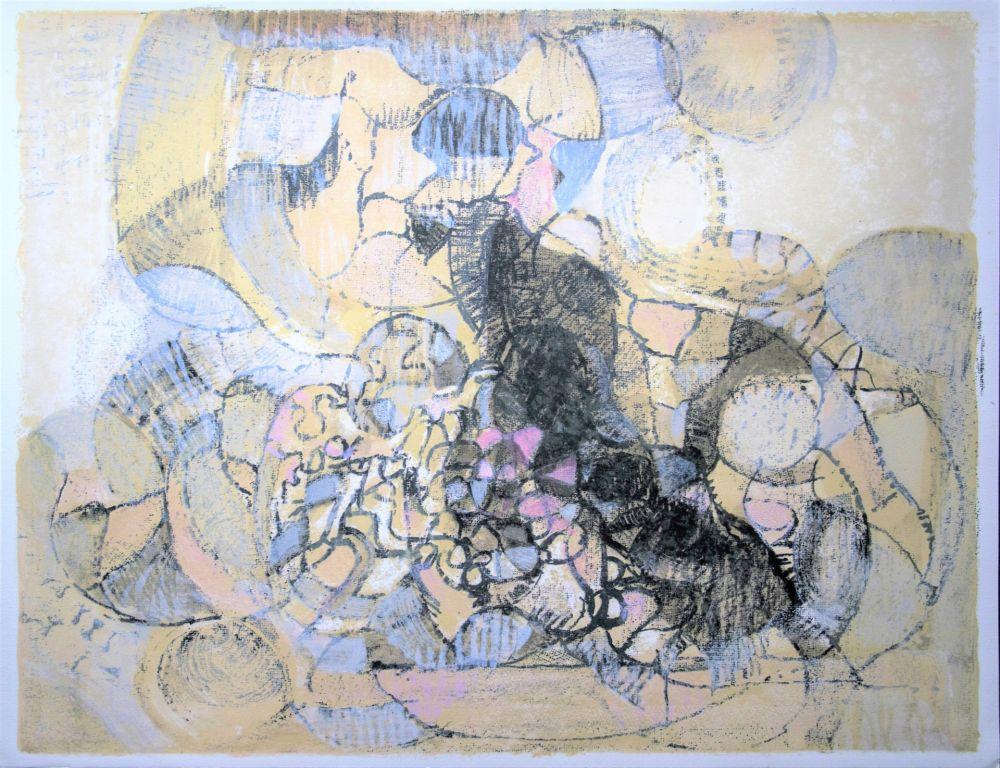 Lithograph Bolin - Paysage à la lumière grise et rose