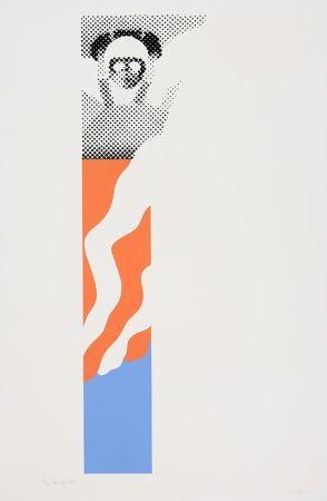 Screenprint Laing - Pennon