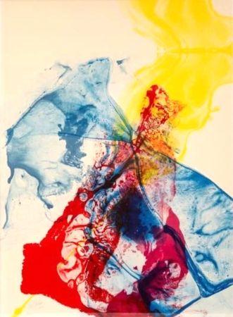 Lithograph Jenkins - Phenomena: Katherine Wheel