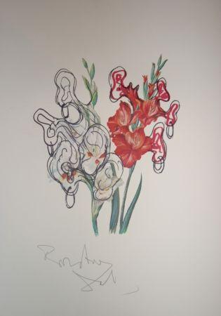 Lithograph Dali - Pirates Gladioli (surrealistic flowers)