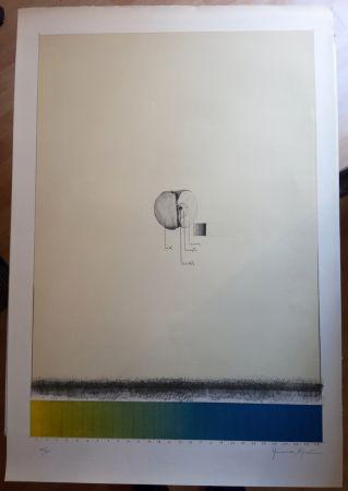 Lithograph Hernandez Pijuan - Poma