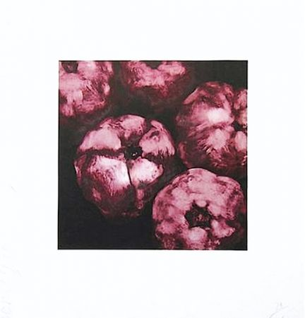 Screenprint Sultan - Pomegranates