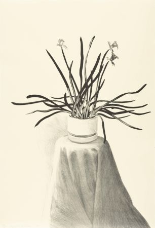 Lithograph Hockney - Potted Daffodils