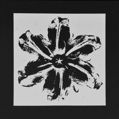 Screenprint Robierb - Power Flower (Black)