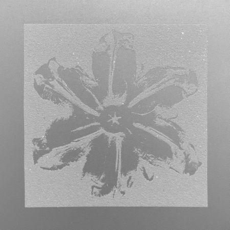 Screenprint Robierb - Power Flower (Silver)